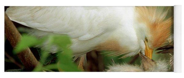 Cattle Egret And Nestlings Yoga Mat
