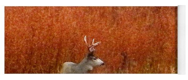 Cautious Mule Deer Buck Yoga Mat