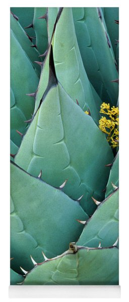 Century Plant And Tiny Blossom Yoga Mat
