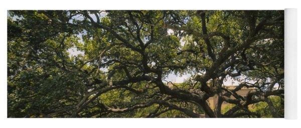Century Tree Yoga Mat