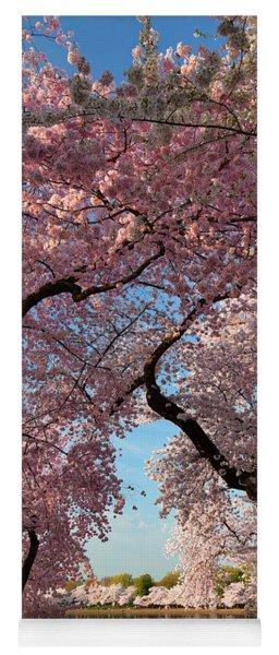 Cherry Blossoms 2013 - 024 Yoga Mat