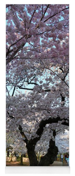 Cherry Blossoms 2013 - 044 Yoga Mat