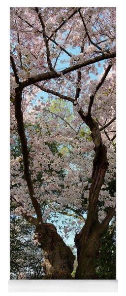 Cherry Blossoms 2013 - 056 Yoga Mat