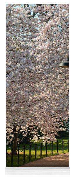 Cherry Blossoms 2013 - 060 Yoga Mat
