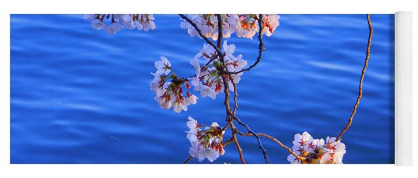 Cherry Blossoms Hanging Over Tidal Basin Yoga Mat