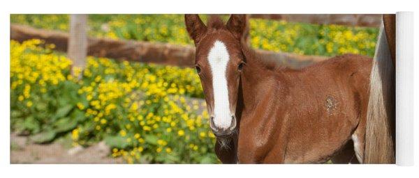 Chestnut Foal Yoga Mat