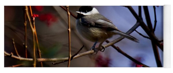 Yoga Mat featuring the photograph Chickadee by Robert L Jackson