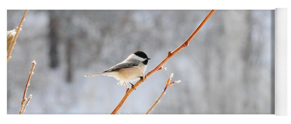 Yoga Mat featuring the photograph Chickadee by Susie Rieple