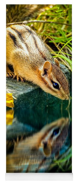 Chipmunk Reflection Yoga Mat