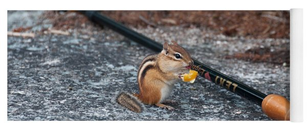 Chipmunk Yoga Mat