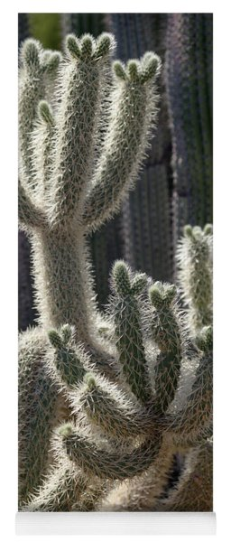 Cholla Cactus Arizona Yoga Mat