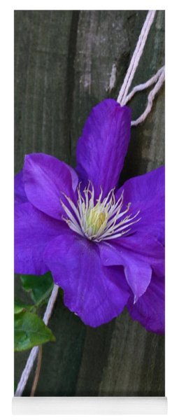 Clematis On A String Yoga Mat