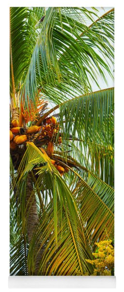 Coconut Palm In Tropical Garden Yoga Mat