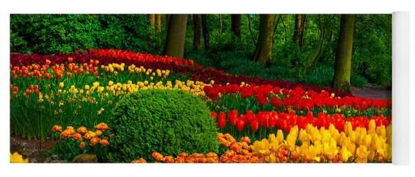 Colorful Corner Of The Keukenhof Garden 4. Tulips Display. Netherlands Yoga Mat