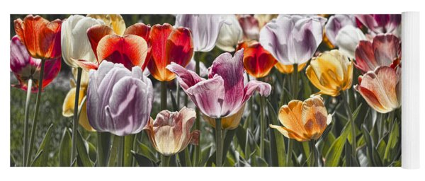 Colorful Tulips In The Sun Yoga Mat