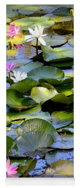 Colorful Water Lily Pond Yoga Mat