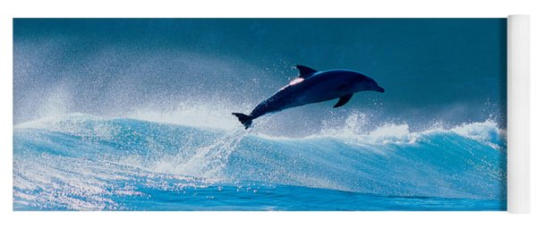 Common Dolphin Breaching In The Sea Yoga Mat