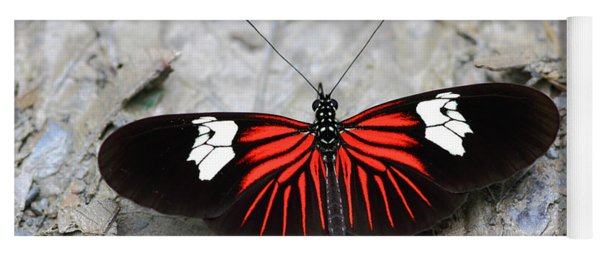 Common Longwing Butterfly Yoga Mat