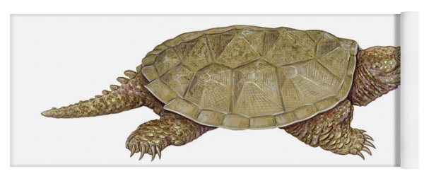Common Snapping Turtle Yoga Mat