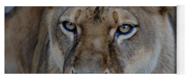 Concerned Lioness Yoga Mat