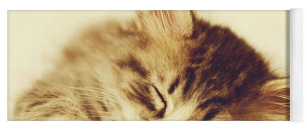 Content Kitty Yoga Mat