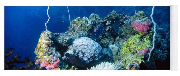 Corals On Ship Wreck Yoga Mat