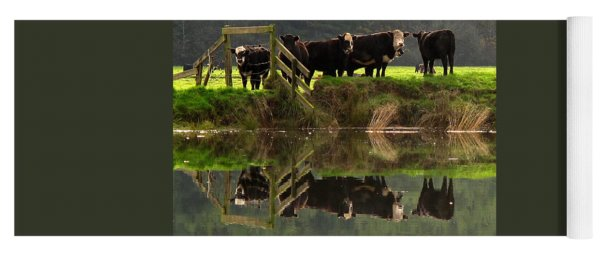 Cow Reflections Yoga Mat