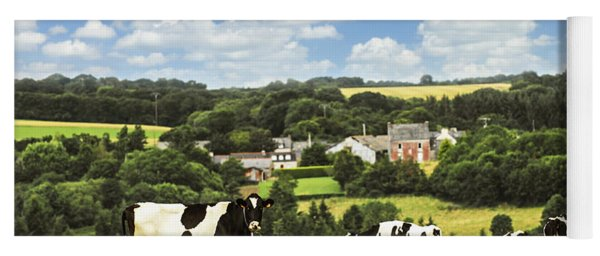 Cows In A Pasture In Brittany Yoga Mat