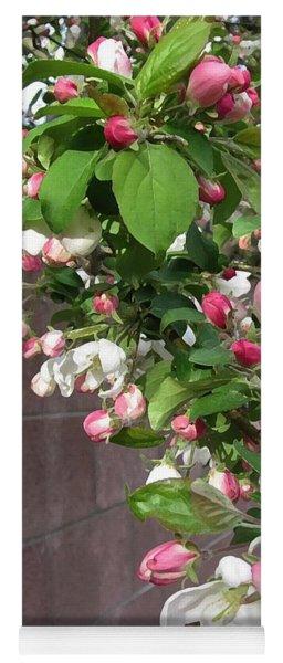 Crabapple Blossoms And Wall Yoga Mat