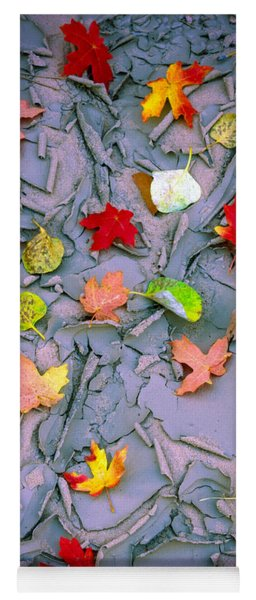 Cracked Mud And Leaves Yoga Mat