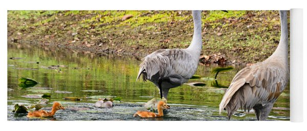 Crane Family Swim II Yoga Mat