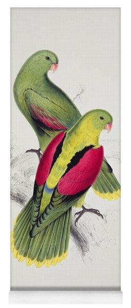 Crimson Winged Parakeet Yoga Mat