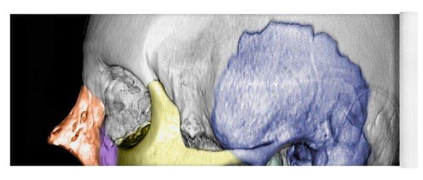 Ct Reconstruction Of Skull Yoga Mat