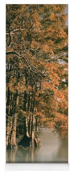 Cypress Autumn  Yoga Mat