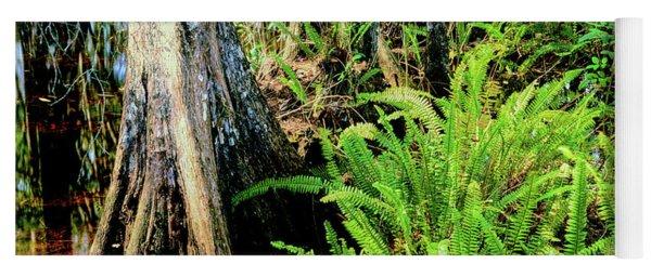 Cypress Trees In Swamp, Six Mile Yoga Mat