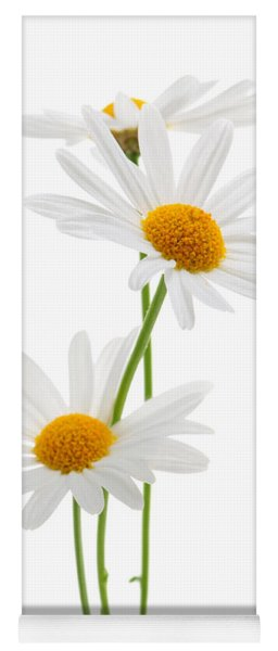 Daisies On White Background Yoga Mat