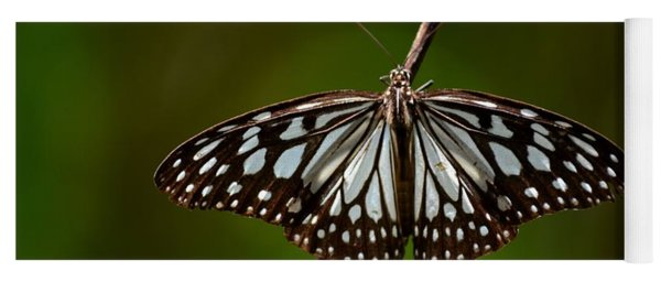 Dark Glassy Tiger Butterfly On Branch Yoga Mat