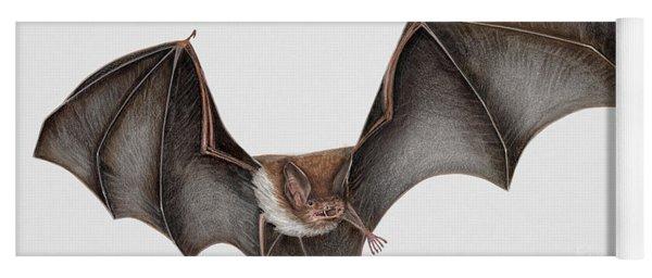 Daubentons Bat Myotis Daubentonii - Murin De Daubenton-murcielago Ribereno-vespertilio Di Daubenton Yoga Mat