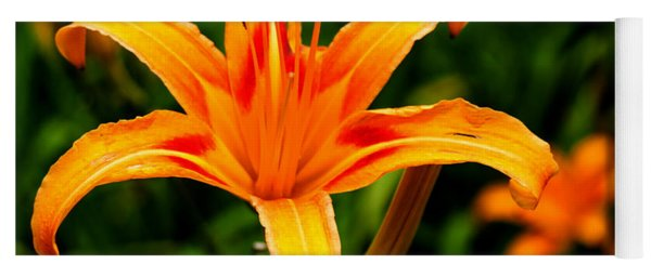 Day Lily Yoga Mat