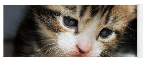 Daydreamer Kitten Yoga Mat