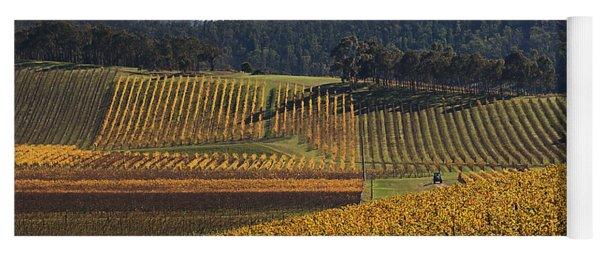 golden vines-Victoria-Australia Yoga Mat