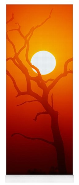 Dead Tree Silhouette And Glowing Sun Yoga Mat