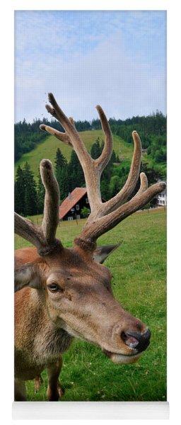 Deer Cervidae With Impressive Antlers Yoga Mat
