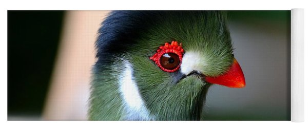 Delicate Green Turaco Bird With Red Beak White Patches And Black Crown Yoga Mat