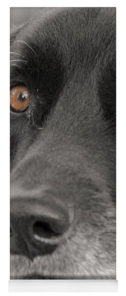 Dog Peek A Boo Yoga Mat