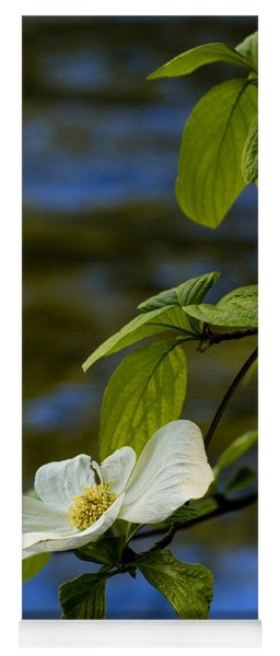 Dogwood On The Merced Yoga Mat