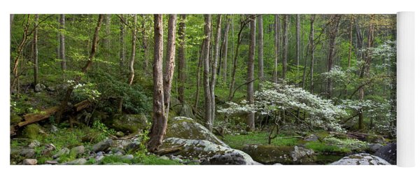 Dogwood Trees In Spring Along Middle Yoga Mat