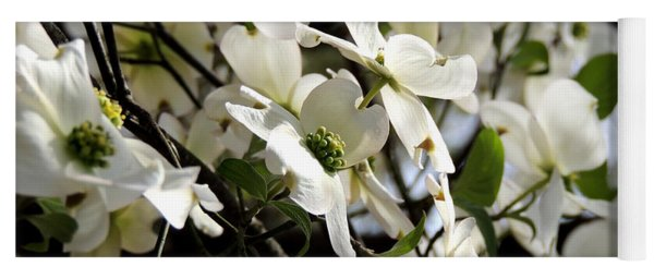 Dogwoods In The Spring Yoga Mat