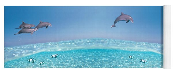 Dolphins Leaping In Air Yoga Mat