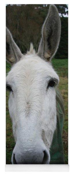 Donkey Yoga Mat